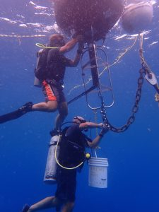 CCMI staffers install the new CREWS buoy on Little Cayman's north coast