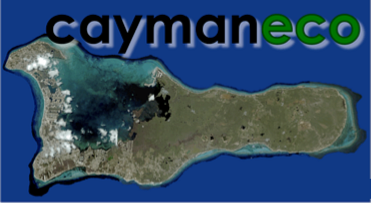 Cayman Eco Beyond Cayman Blackouts In Texas And
